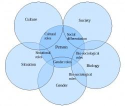 Social-Roles