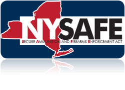 NY_SAFE_Act_page